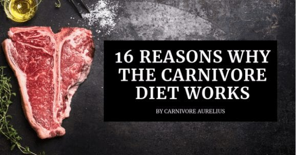 16 Reasons Why The Carnivore Diet May Work (The Science Behind it)